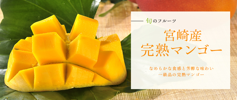 京橋千疋屋 宮崎産完熟マンゴー1玉入(4Lサイズ)