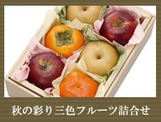 京橋千疋屋 せんびきや <柿セット>初秋~錦秋を彩る 美食の三色フルーツセット