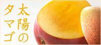 京橋 千疋屋 せんびきや 宮崎マンゴー 太陽のタマゴ
