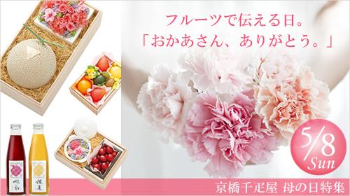 京橋 千疋屋 せんびきや 母の日特集2016